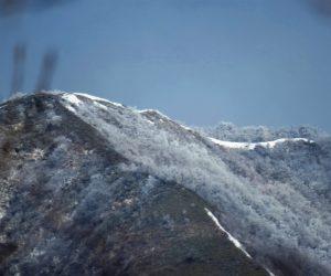 3/17 上蒜山8合目付近  霧氷が着いています。 茅部野より