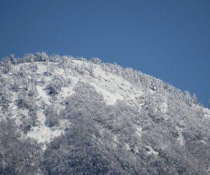 3/23 新雪の皆ヶ山山頂付近