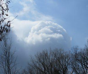 4/8 積雲  発達中の積雲、この雲の下は雪?