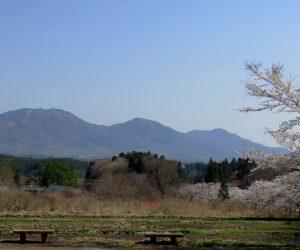 4/10 茅部神社の桜と上蒜山  見ごろはあと4~5日
