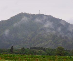 5/7 高張山  蒜山盆地に突き出たこの山はテレビ塔が立っていて蒜山地域のかなめ 茅部野西部より