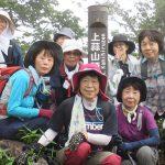 【ツアーレポート】ササユリ登山を開催しました