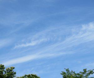 7/22 巻雲 梅雨の最中ですがたまにはこんな青空も