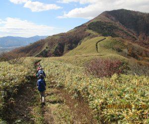 中蒜山への縦走路