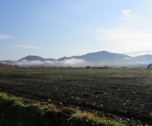 11/18 朝の高張山(左)と蜂ヶ巣山(右) 茅部野にて、朝霧が蒜山盆地の底へと消えて行きます。