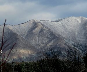 12/10 雪化粧の上蒜山  2度目の雪化粧 茅部野より