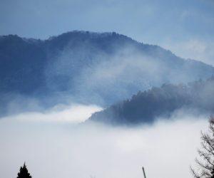 12/10  蒜山盆地の雲海 茅部野より上長田方面 上長田方面の雲海はチョクチョク見ることが出来ます。