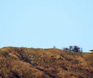 12/10 中蒜山山頂付近  上蒜山はかなり白くなっているのに中、下蒜山はあまり積もっていません。 茅部野より