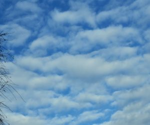25日 高積雲