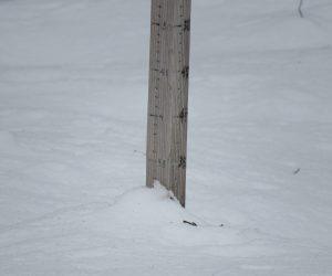 31日 積瀬戸30㎝、雪はかなり降ったのですが昨日よりマイナす。