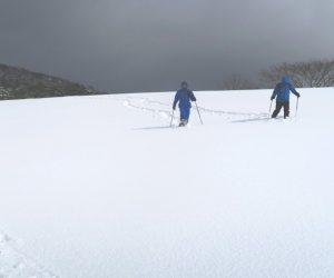 中蒜山山麓スノーシュー 雪原の向こうからスノーシュウハイカー