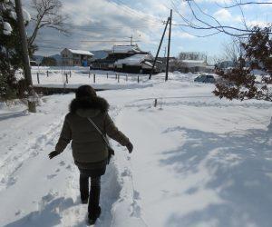 1/1  積雪25㎝