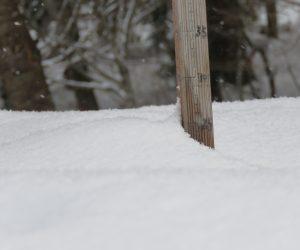 1/2 積雪25㎝