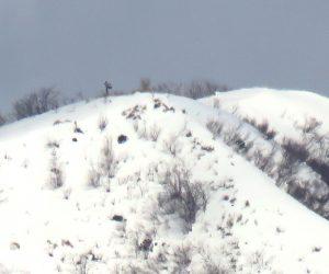 1/19  上蒜山8合目付近 積雪はあまり多くないようです。 雪庇が発達していないのは今年は風が弱いからもあるでしょう。