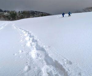 1/26 新雪にトレース、 「僕の前に道穴井、僕の後ろに道が出来る、、、、、」 各自自分の道を作りました。