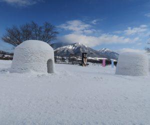 雪恋祭りスノーシュー体験 2蒜山をバックに3mの巨大カマクラ