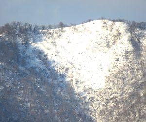 1/21 上蒜山山頂尾根  茅部野より 左の木が生えているほうが山頂