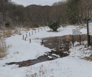 1/24 犬挟り湿地 雪が少ないので水面が見えていますが例年は一面の雪原になります。