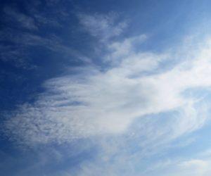 2/7  巻雲