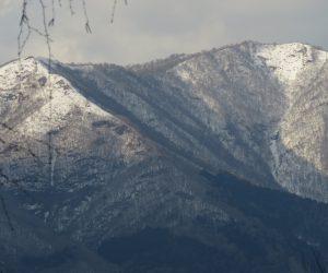 2/23  上蒜山 雪がうっすら積もっています。