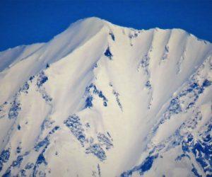 大山の山頂近くは新雪がべっとり