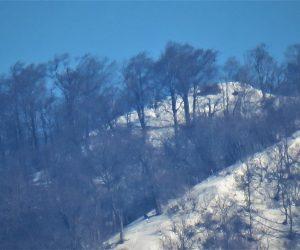 上蒜山三角点付近  手前は山頂に続く登山道