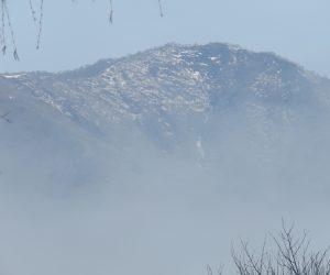 3/20  霧に浮かぶ上蒜山