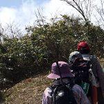 【ツアーレポート】擬宝珠山カタクリトレッキングツアーを開催しました