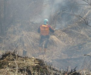 4/7 延焼防止隊 植林地などへの延焼防止に若手が活躍、点火前に刈り払って火道を切る方法と当日20㎏の水を背負って水を噴射し防火帯を作る方法とがあります。ここに刈払機で防火帯を作るのは大変