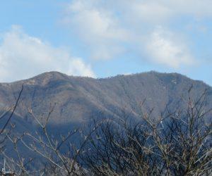 4/9    上蒜山  わずかに雪が残っていました。