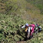 【ガイド活動】蒜山三座縦走登山を案内しました