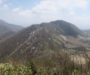 4/22 擬宝珠山-象山より