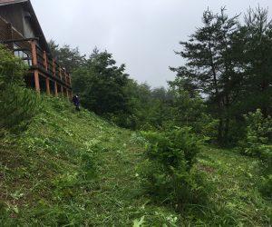 三平草刈2