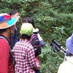 【ツアーレポート】大山道トレッキングツアーを開催しました