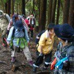 【ガイド活動】第1回蒜山1123トレッキングをガイドしました