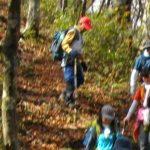 【ツアーレポート】毛無山~朝鍋鷲ケ山縦走ツアーを開催しました