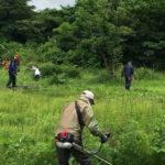 【保全活動】湿原草刈りを行いました