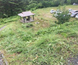 三平草刈1
