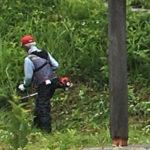 【保全活動】三平里山保全草刈りを行いました。