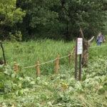 【保全活動】犬挟湿原保全草刈りを行いました