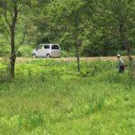 【保全活動】湿原保全活動を実施しました